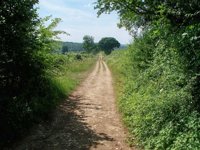 Track to Guiting Wood