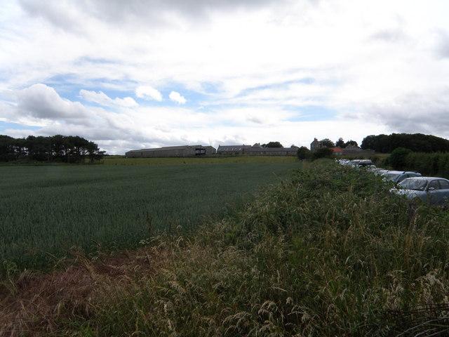 Dunstan  Steads  Farm