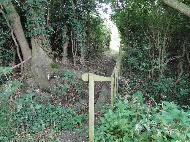 Footbridge off the Footpath