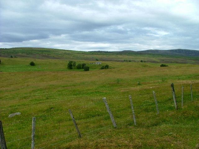 Grazing land at Duthil