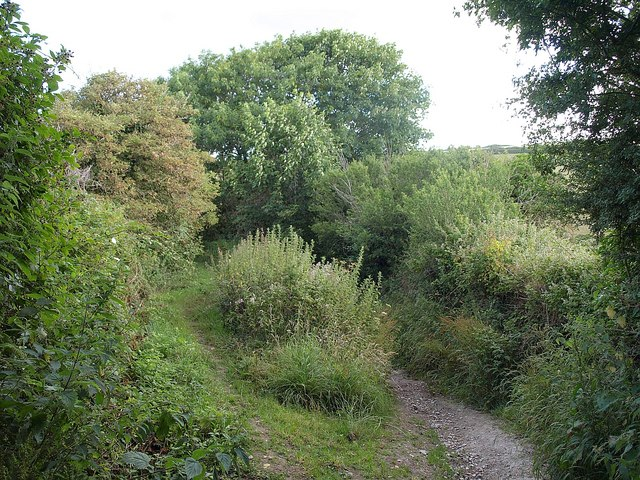 Bridleway near St Columb Minor