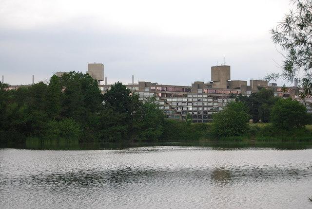 UEA: Suffolk Terrace across University Broad