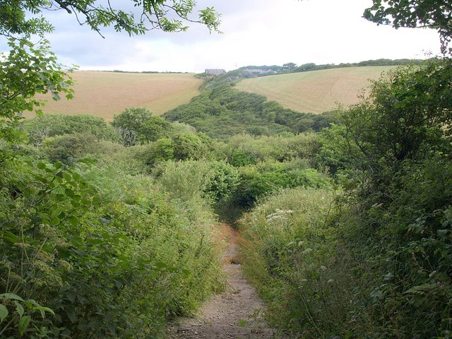 Bridleway into the Porth valley