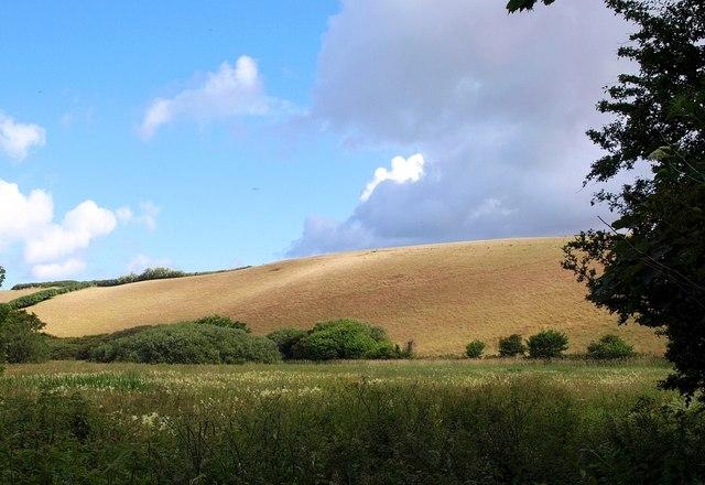 Hillside near Penrose