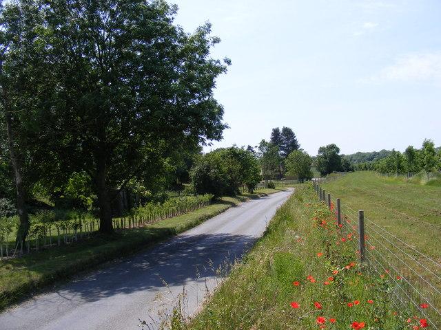 Peasenhall Road