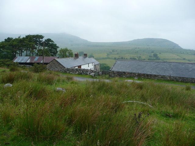 Rowlyn Isa Farm