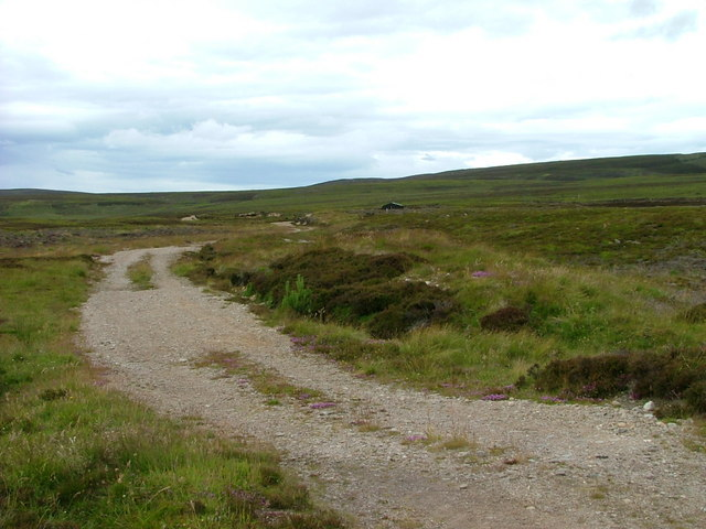 Track to the grouse moor
