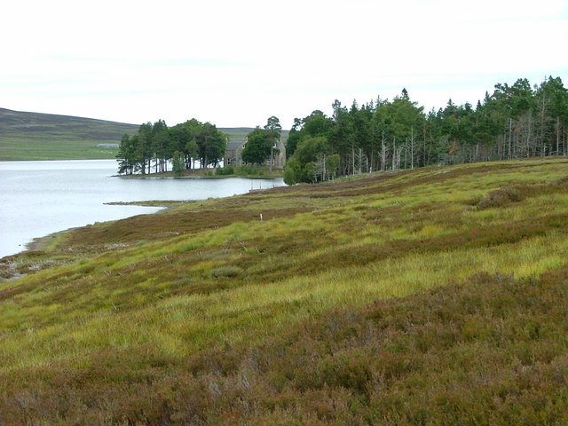 Grouse moor and Lochindorb Lodge