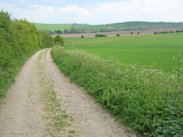 Track near East Kennett