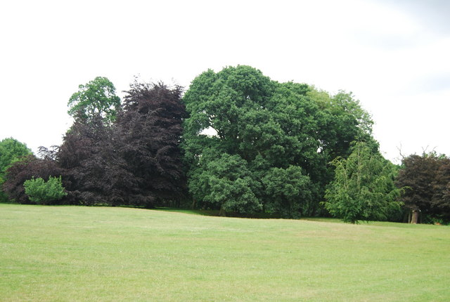 Woodland, Earlham Park