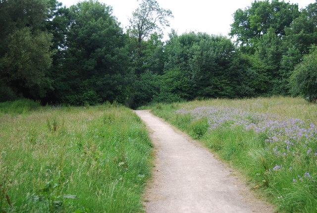 Yare Valley Walk