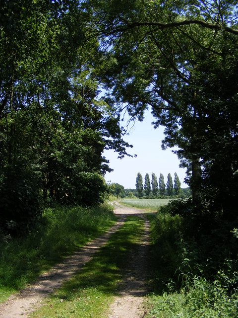 Track to Packway Farm