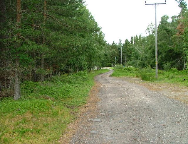 Driveway to Lochindorb Lodge