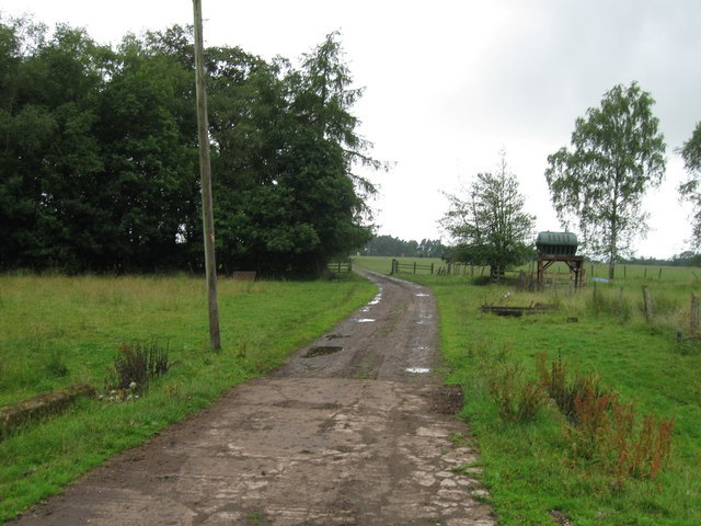 Track from White Close Farm