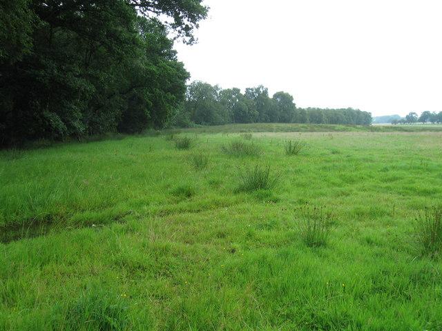 Fields near White Close Farm