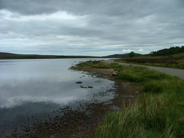 East shore of Lochindorb