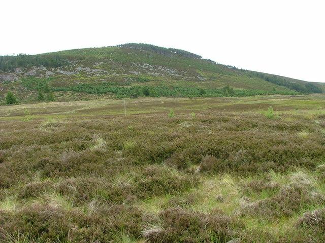 Moorland above Lochindorb