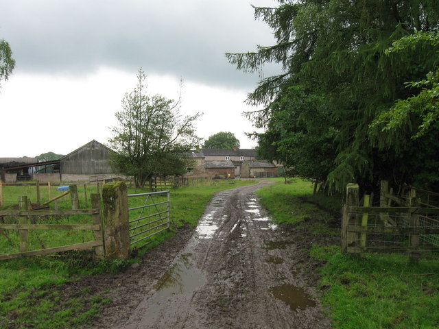 Track to White Close Farm