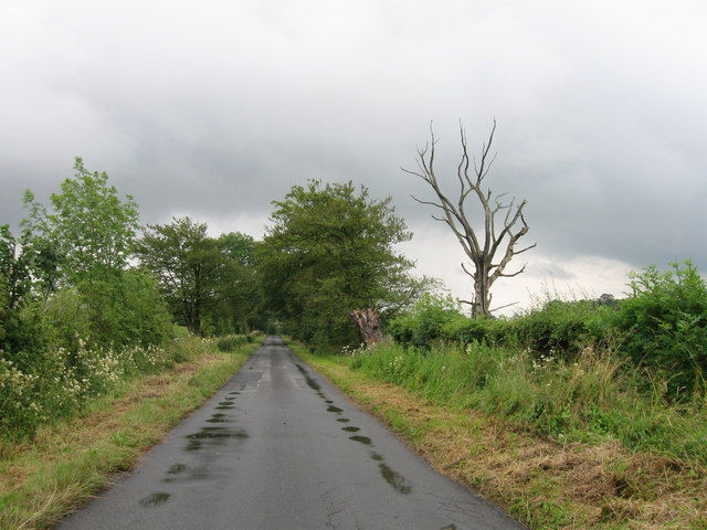 Country Lane near Dorryfield