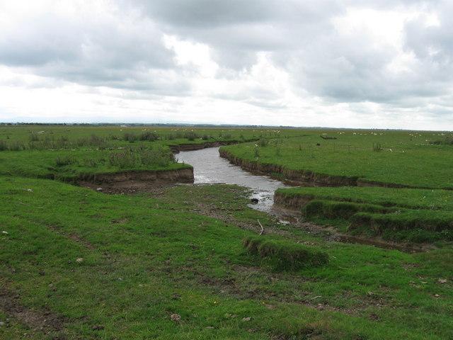 Rockcliffe Marsh, near Rockcliffe Cross