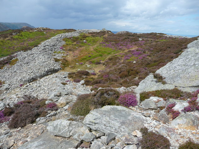 Part of the stone ramparts of the hillfort on Conwy Mountain