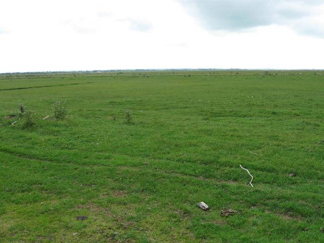 Rockcliffe Marsh, Cumbria