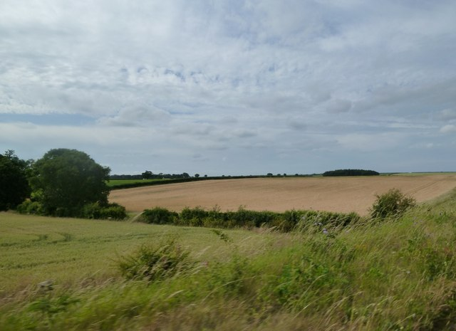 Crop fields west of the Wells and Walsingham Light Railway