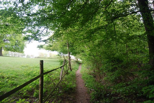 Footpath along the edge of Leamland Wood