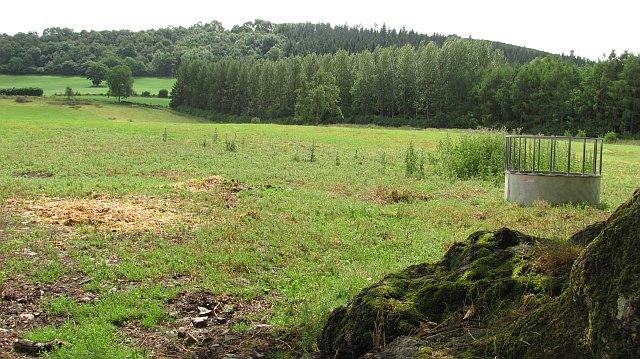 Field below Callow Hill