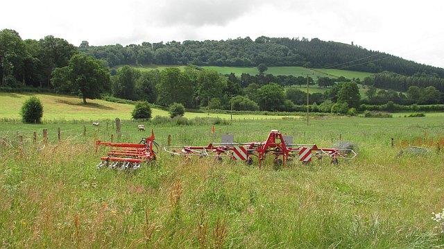 Farmland, Hope Dale
