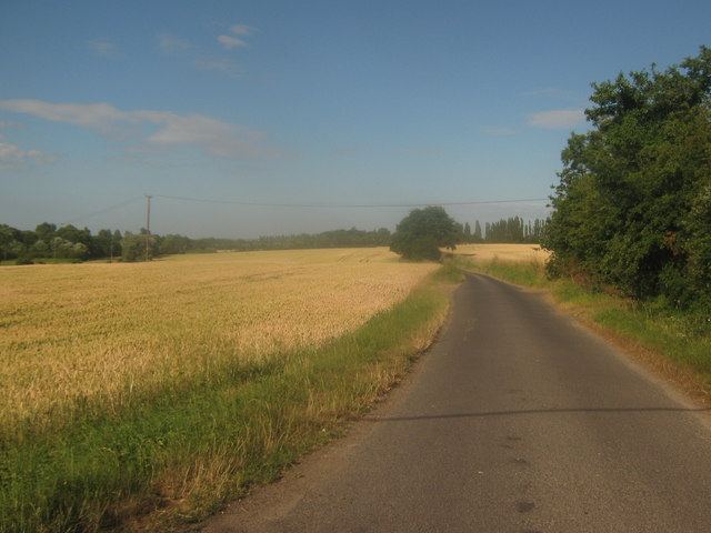 Hollybush Lane