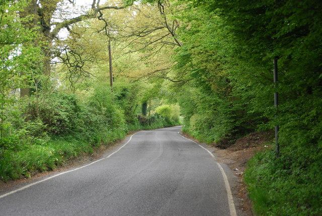 Cinder Lane