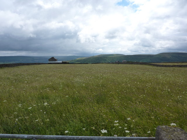 Meadow above Smalldale