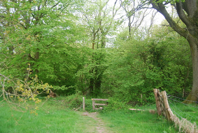 Footpath entering Pain's Wood