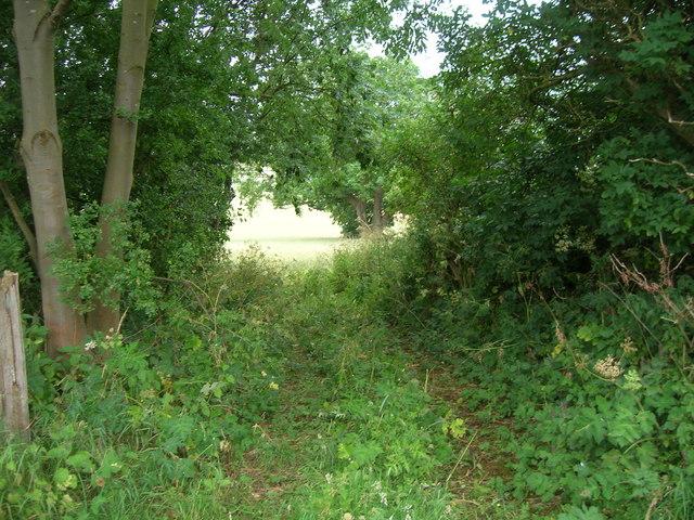 Bridleway towards the Thirkleby Manor