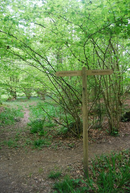 Footpath sign in Pain's Wood