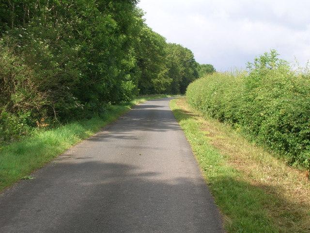 High Street heading west beside High Mowthorpe Plantation