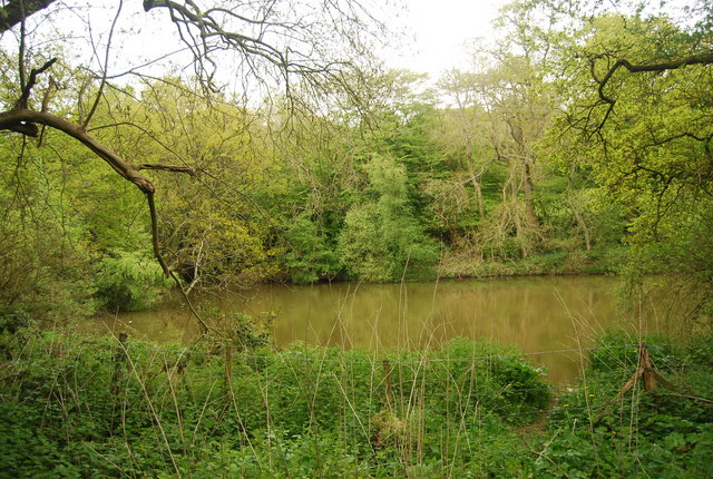 Pond by the path to Horsted Keynes