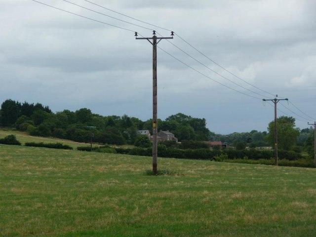 Wooden pylons crossing field