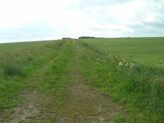 Bridleway off minor road