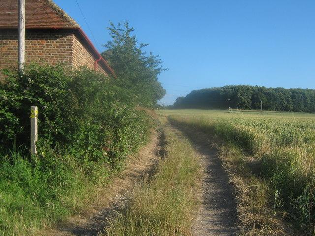 Stour Valley Walk towards Fordwich Farm