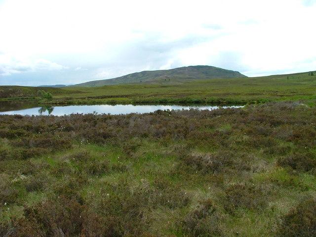 Eastern end of Black Loch