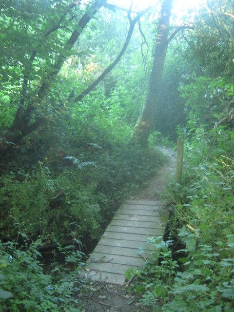 Footbridge in Chequers Wood