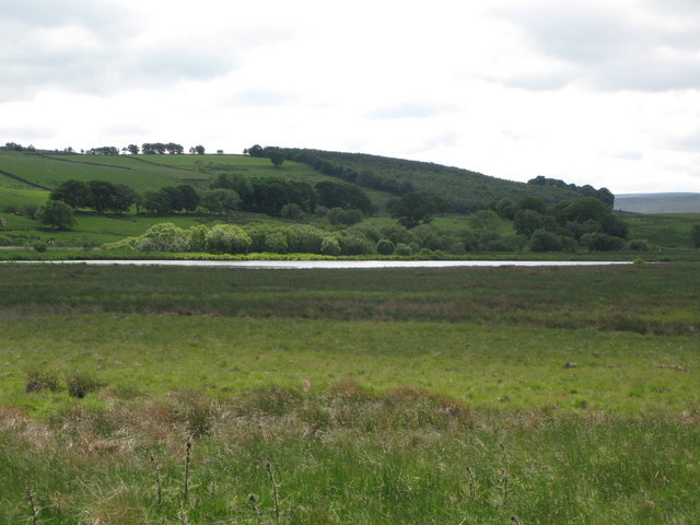 Rough pastures and lake southeast of Lanehead