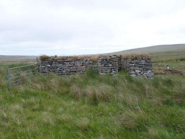 Sheepfold by the Allt an Learanaich