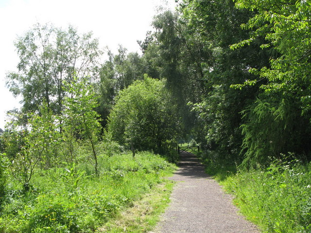 Trackbed of the former Haltwhistle to Alston railway at Featherstone (2)