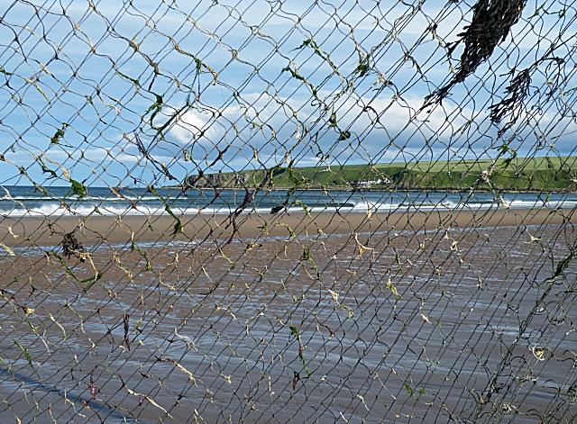 Lunan Bay through the nets