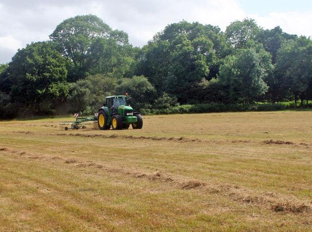 Windrowing hay near Hudnall