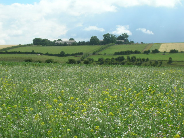 Farmland looking towards Duggleby High Barn