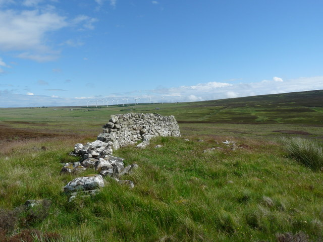 Chambered cairn above the Burn of Houstry